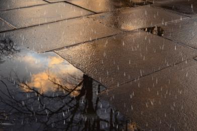 rainfall4